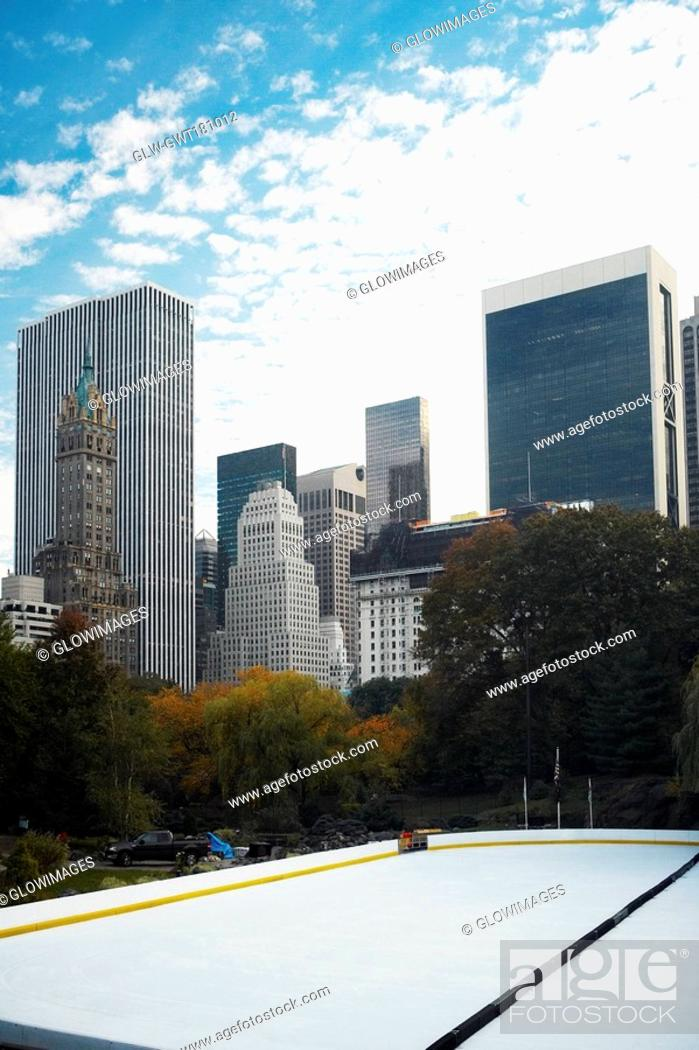 Stock Photo: Trees in front of buildings, Central Park, Manhattan, New York City, New York State, USA.