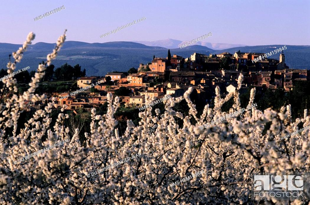 Stock Photo: France, Vaucluse, Luberon, Roussillon, labelled Les Plus Beaux Villages de France The Most Beautiful Villages of France, cherry trees in blossom.