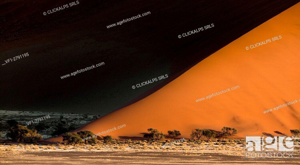 Imagen: Sunrise from dune 45 in Sossuvlei, Namib Naukluft National Park. Contrast on dunes enhanced by early morning lights.