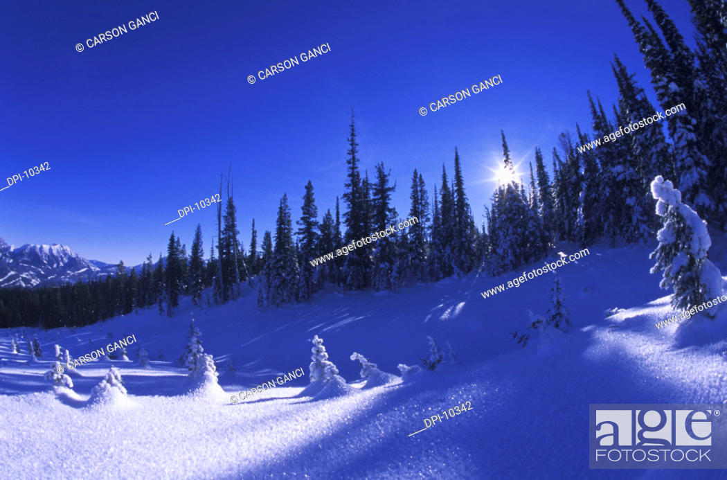 Stock Photo: Winter In the Rockies.