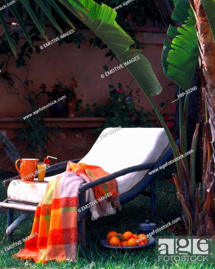 Stock Photo: Relaxation in a palm garden.