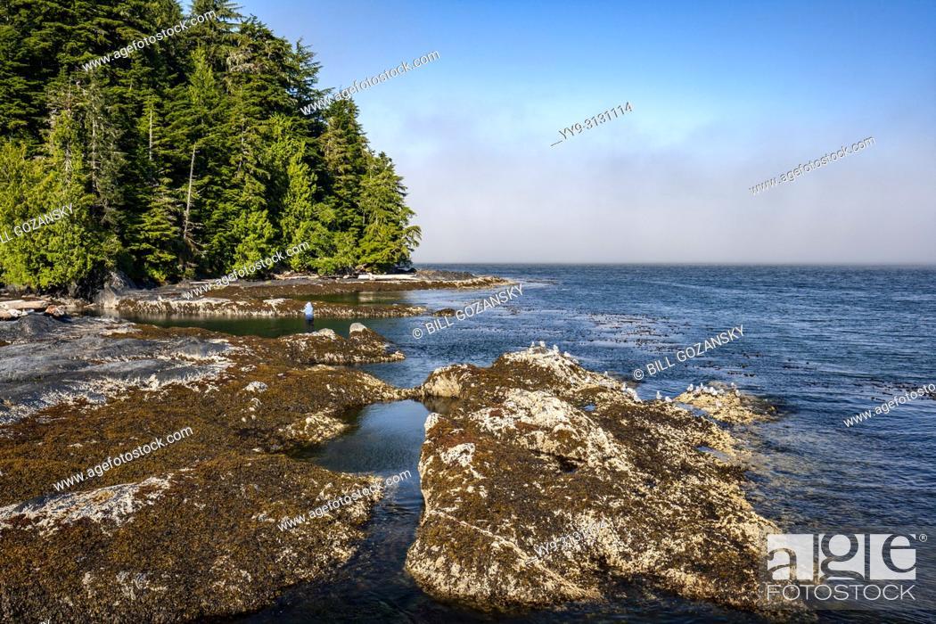Stock Photo: Rocky coastline view at Port Renfrew, Vancouver Island, British Columbia, Canada.