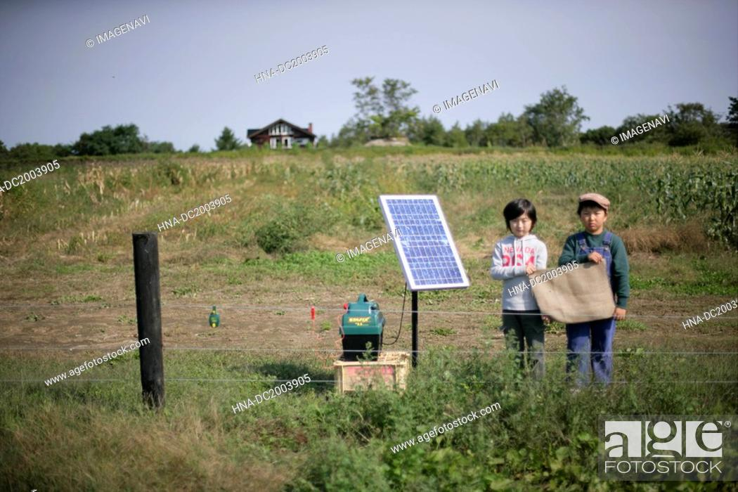 Stock Photo: Boys and solar panel.