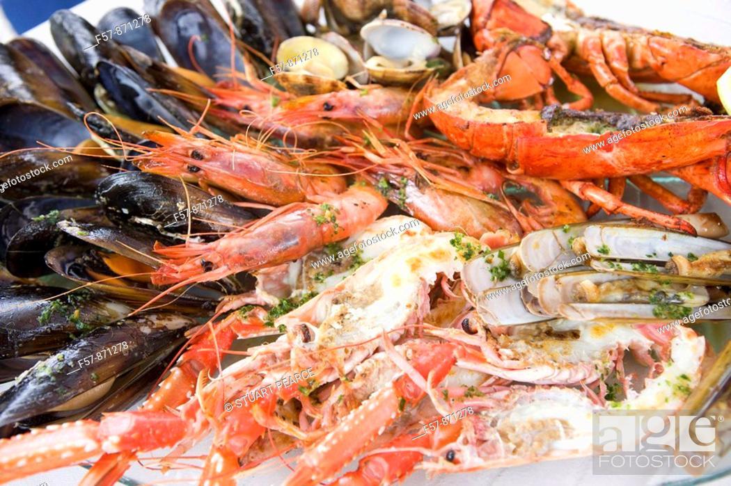 Stock Photo: Mediterranean Shellfish.