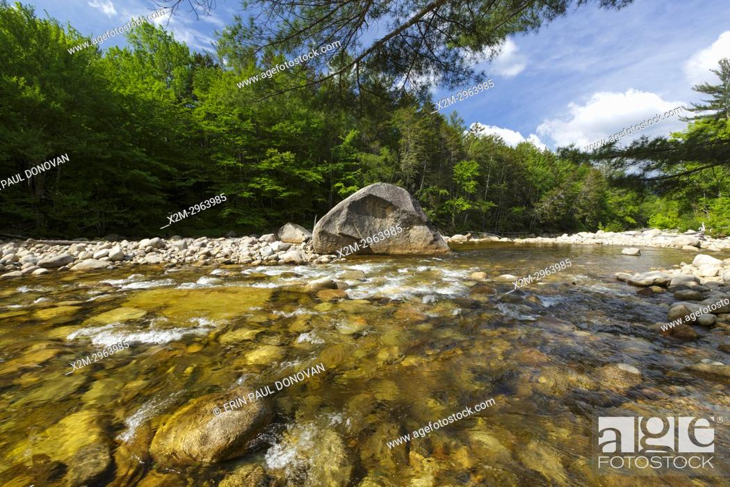 Imagen: The East Branch of the Pemigewasset River in the Pemigewasset Wilderness of Lincoln, New Hampshire USA during the spring months.