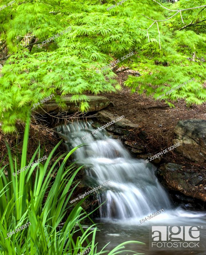 Stock Photo: Small waterfall in a garden setting in the springs.