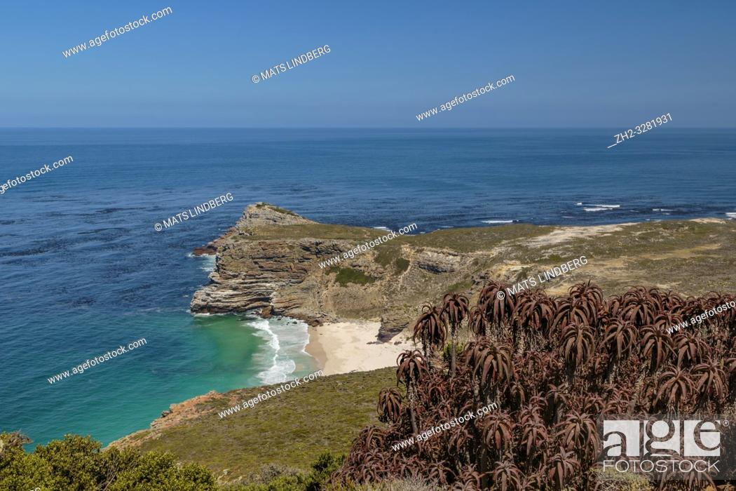 Stock Photo: View over Cape of good hope at Cape point with bushes and ocean, Cape point, South Africa.