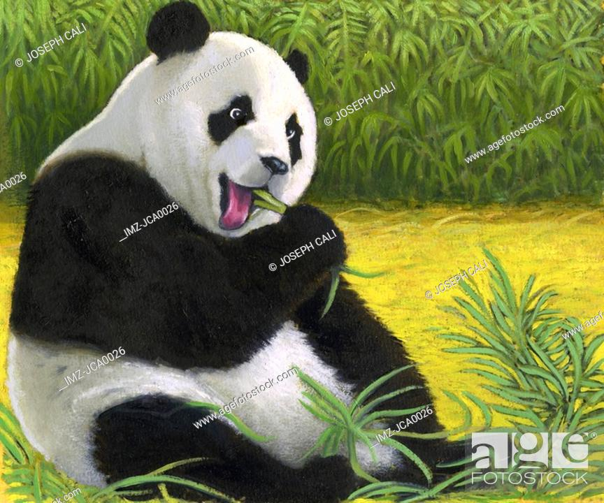 Stock Photo: An illustration of a giant panda bear.