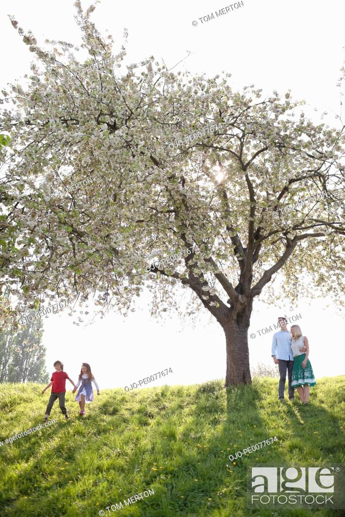 Stock Photo: Family playing under tree in park.