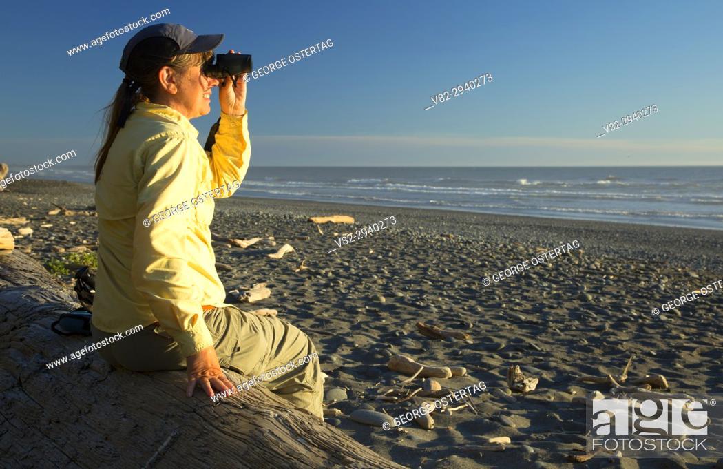 Stock Photo: Birding on Beach 5, Olympic National Park, Washington.