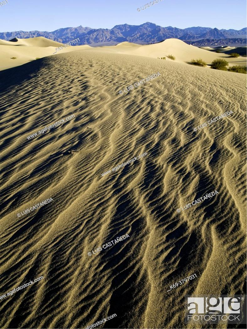 Stock Photo: Stovepipe Wells Sand Dunes. . Death Valley National Park. . California. USA.