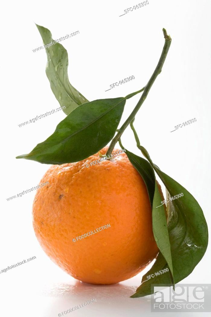Stock Photo: Orange with stalk and leaves.