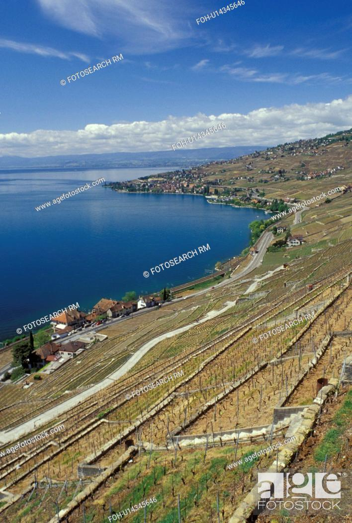 Stock Photo: Lavaux, Switzerland, Vaud, Lake Geneva, Europe, Scenic view of a village surrounded by vineyards along the lakeshore of Lac Leman in the spring in the Canton of.