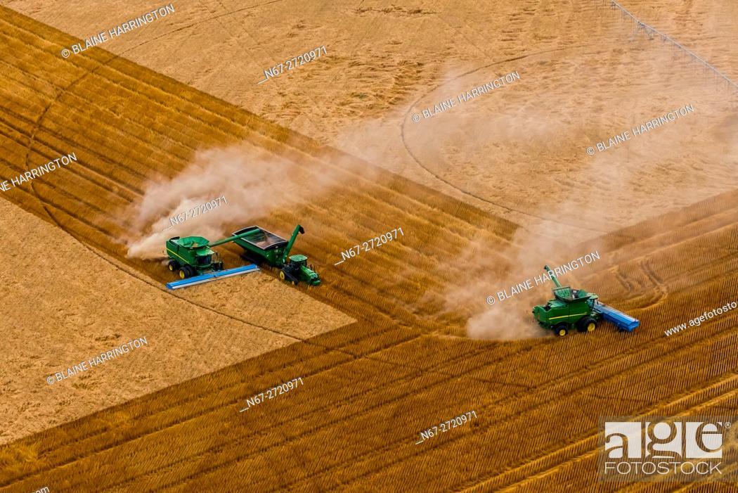 A combine harvester unloads it's grain to a grain wagon