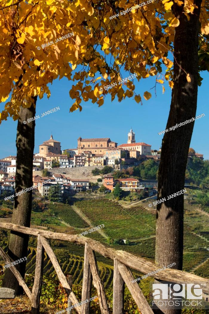 Stock Photo: View over Nebbiola vineyards to medieval town of La Morra, Piemonte, Italy.