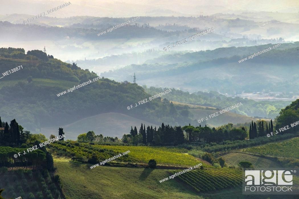 Stock Photo: Panoramic views of Vineyards and fields in SanGimignano, Tuscany, Italy.