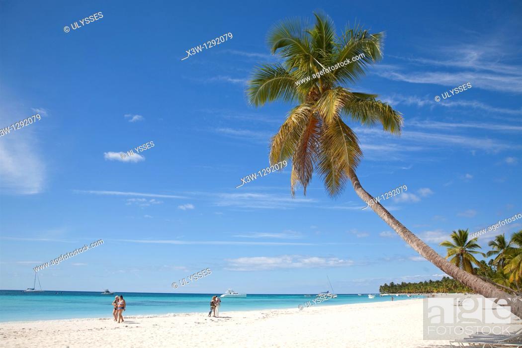 Stock Photo: Sea and beach with palms. Saona Island, Dominican Republic, Caribbean.