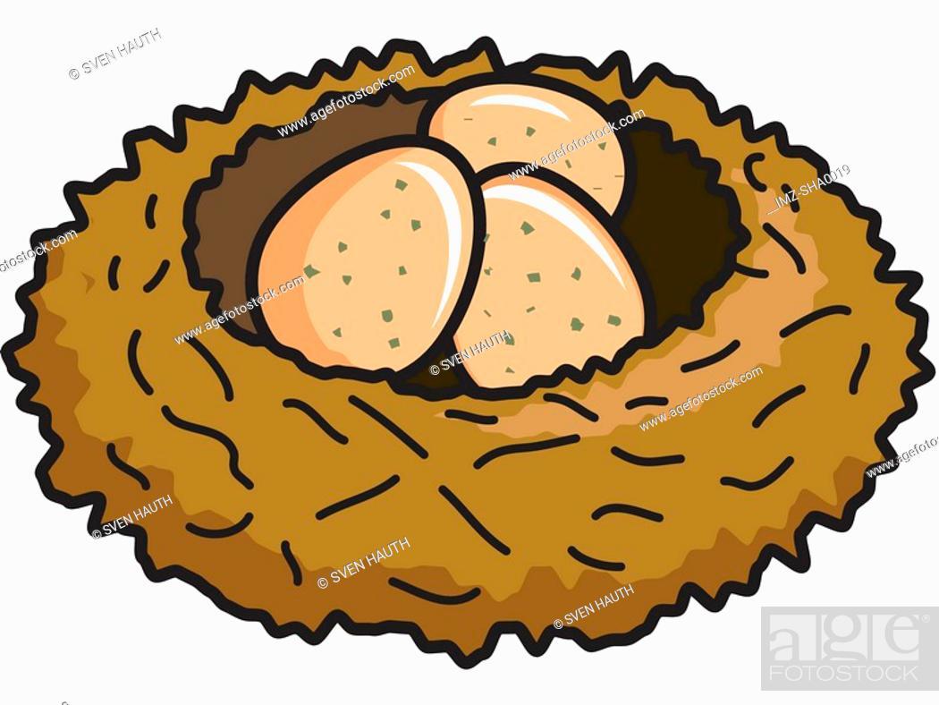 Stock Photo: Birds nest with eggs.