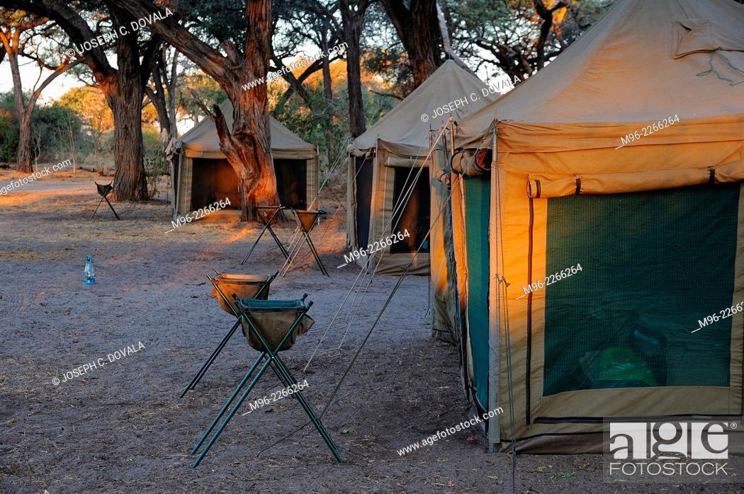 Stock Photo: Guest tents setup and waiting, Moremi, Botswana, Africa.