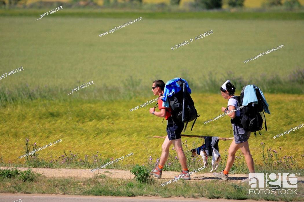 Imagen: , Pilgrims to Santiago de Compostela, helping their dog.
