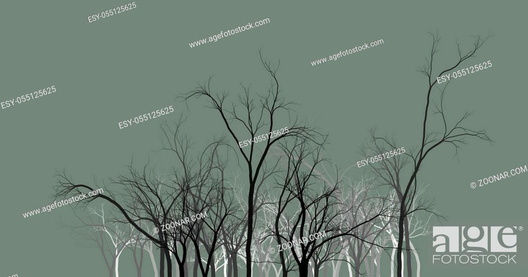 Stock Photo: Black tree silhouettes on dark background wallpaper background abstract.
