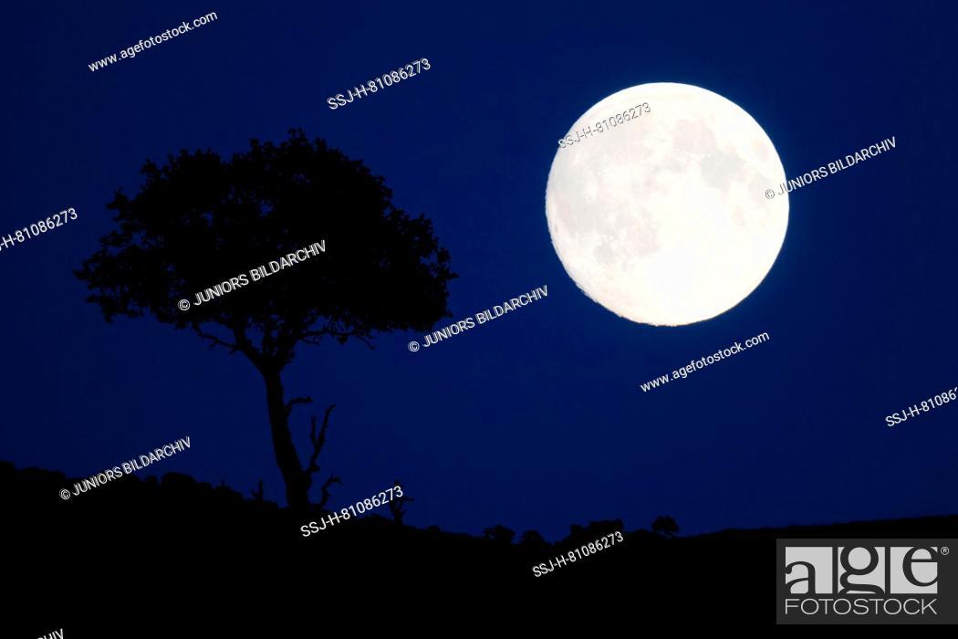 Imagen: Full moon above Scotland, Great Britain.