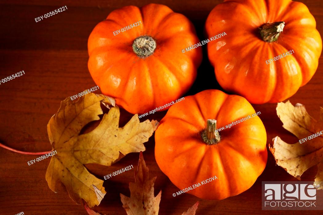 Stock Photo: Top view of autumn colored leaves and little pumpkins.