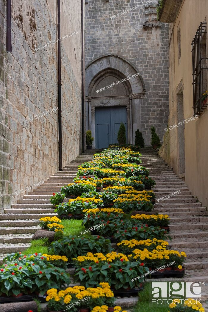 Stock Photo: FLORAL ART EXHIBITION IN GIRONA. CATALONIA. SPAIN.