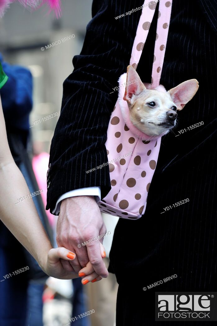 Stock Photo: Easter Parade  5th Avenue, Manhattan, New York.