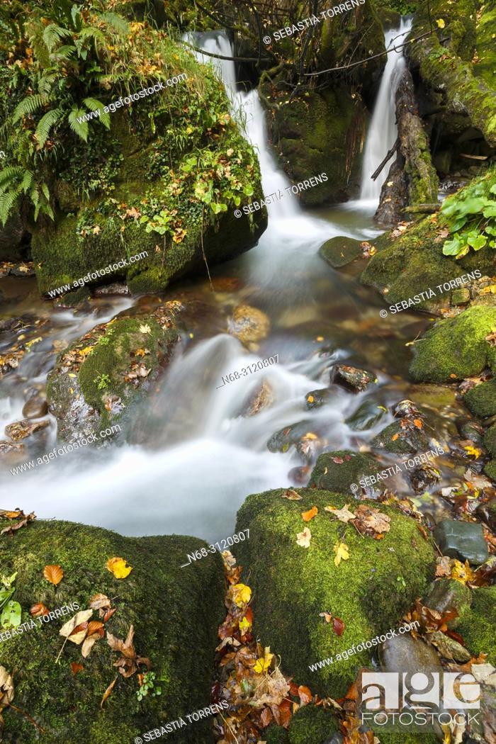 Stock Photo: Little river at Somiedo, Asturias, Spain.
