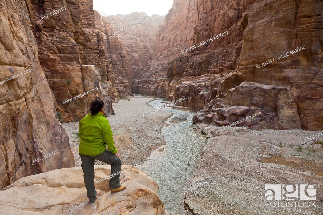Stock Photo: Mujib Canyon Nature Reserve, Rift Valley, Dead Sea, Jordan, Middle East.