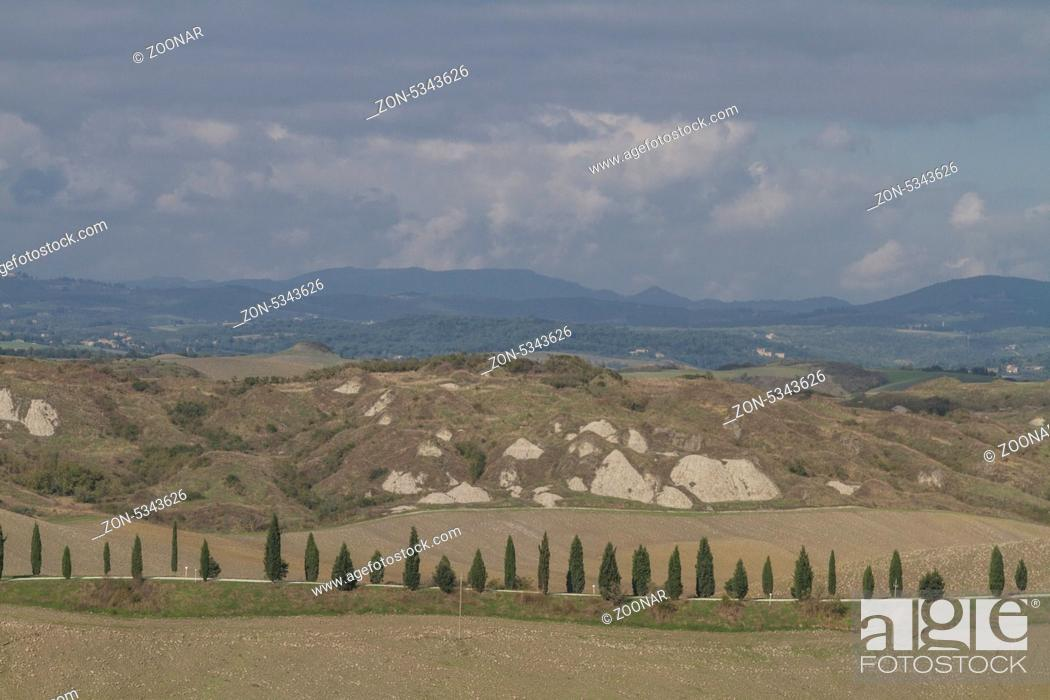 Stock Photo: Zypressenallee in der Toskana - beliebtes und oftmals fotographiertes Fotomotiv.