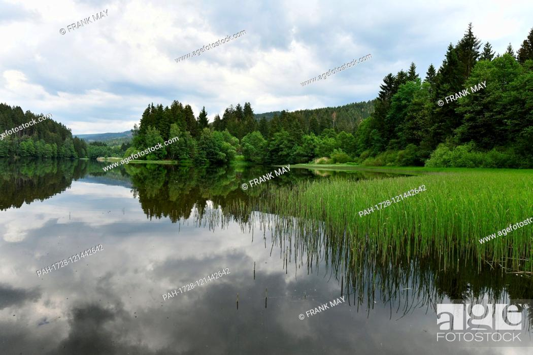 "Stock Photo: Water dam """"Soese"""", Germany, near city of Osterode, 17. June 2019. Photo: Frank May 