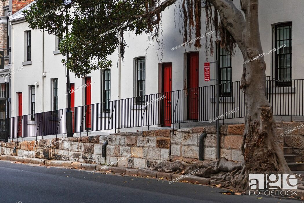 Stock Photo: Terraced cottages in Harrington Street, The Rocks, Sydney, New South Wales, Australia.