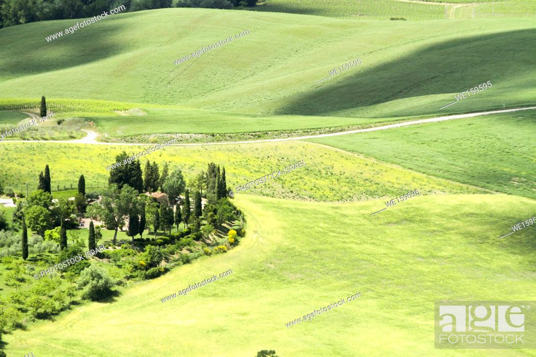 Stock Photo: Rolling green hills with farmhouse and trees Photographed in Umbria, Italy.