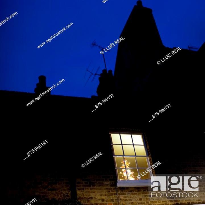 Stock Photo: Christmas tree behind window.