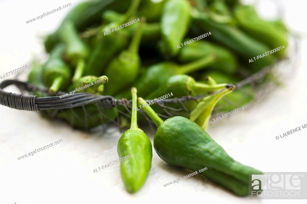 Stock Photo: Green chili peppers.