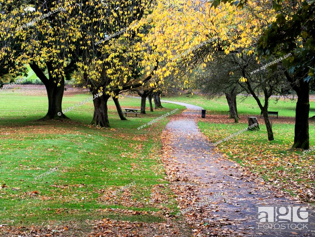 Imagen: Footpath through Aireville Park in Autumn Skipton North Yorkshire England.