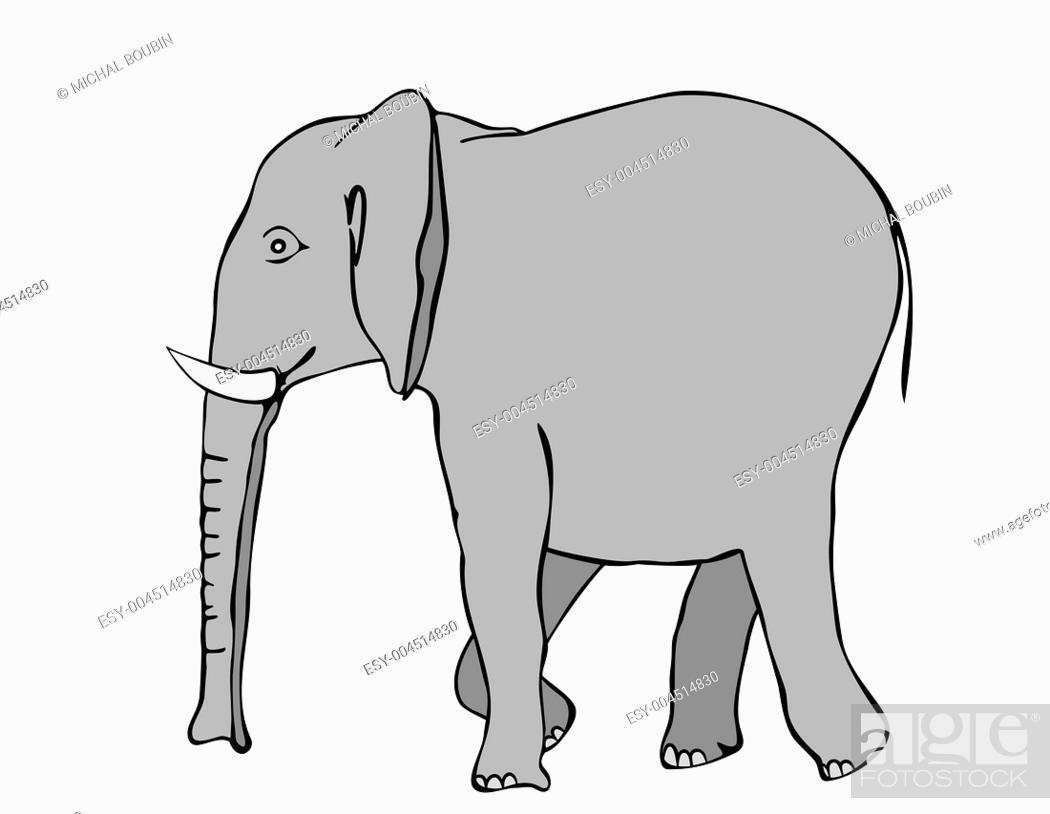 Stock Photo: walking elephant.