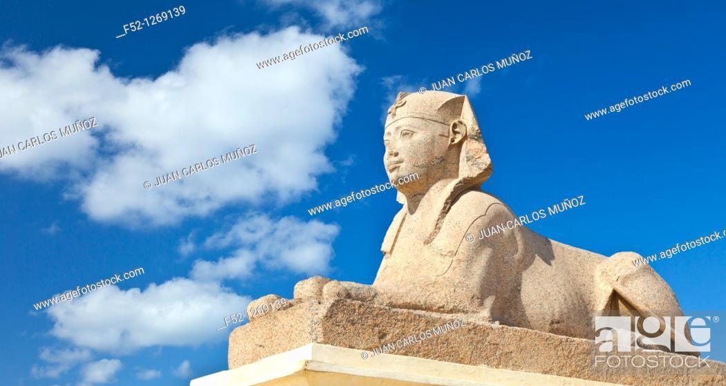 Stock Photo: Sphinx of Heliopolis, Temple of Serapis, Column of Pompey, Karomous, City of Alexandria, Egypt, Mediterranean Sea.
