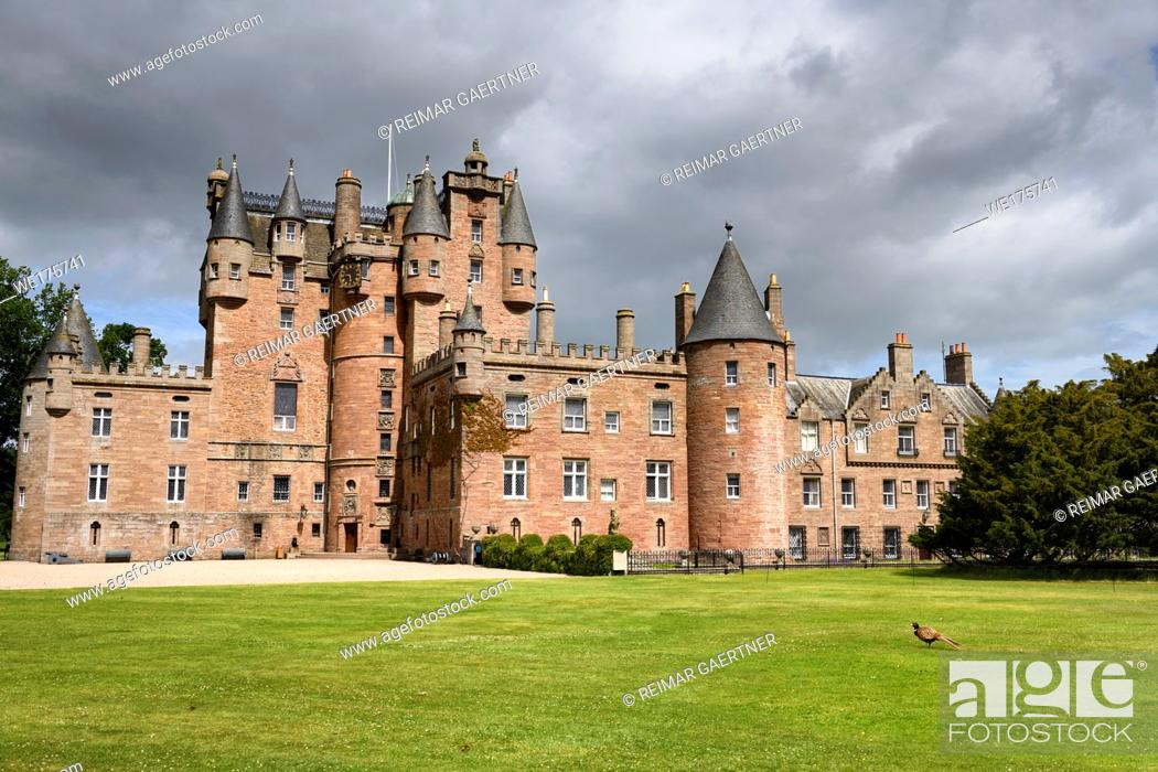 Stock Photo: Front lawn of Glamis Castle childhood home of Queen Mother with wild Ring-necked Pheasant with sun and clouds Scotland UK.