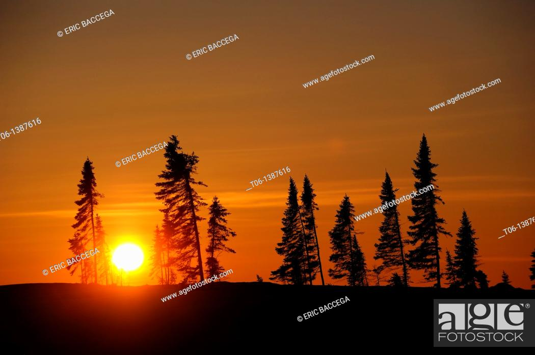 Stock Photo: Tundra lanscape at sunset in winter  Wapusk National Park, Churchill, Manitoba, Canada.