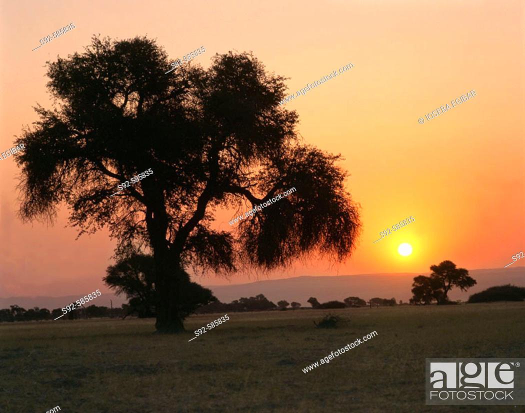 Stock Photo: Botswana.