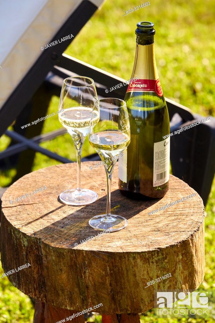 Stock Photo: Bottle of champagne and two glasses, Basque farmhouse, Deba, Gipuzkoa, Basque Country, Spain, Europe.