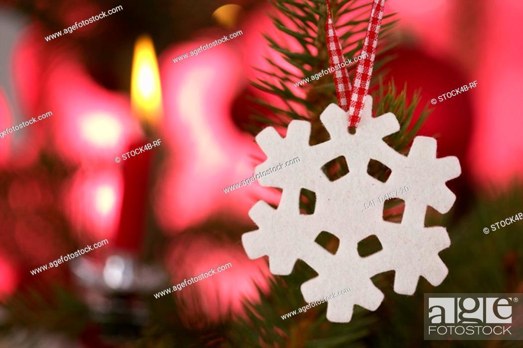 Stock Photo: Ornament on Christmas tree.