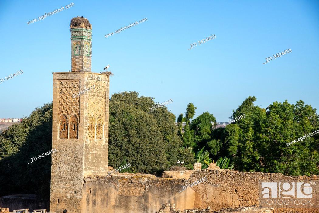 Imagen: ruins at Chellah in Rabat, Maroc.