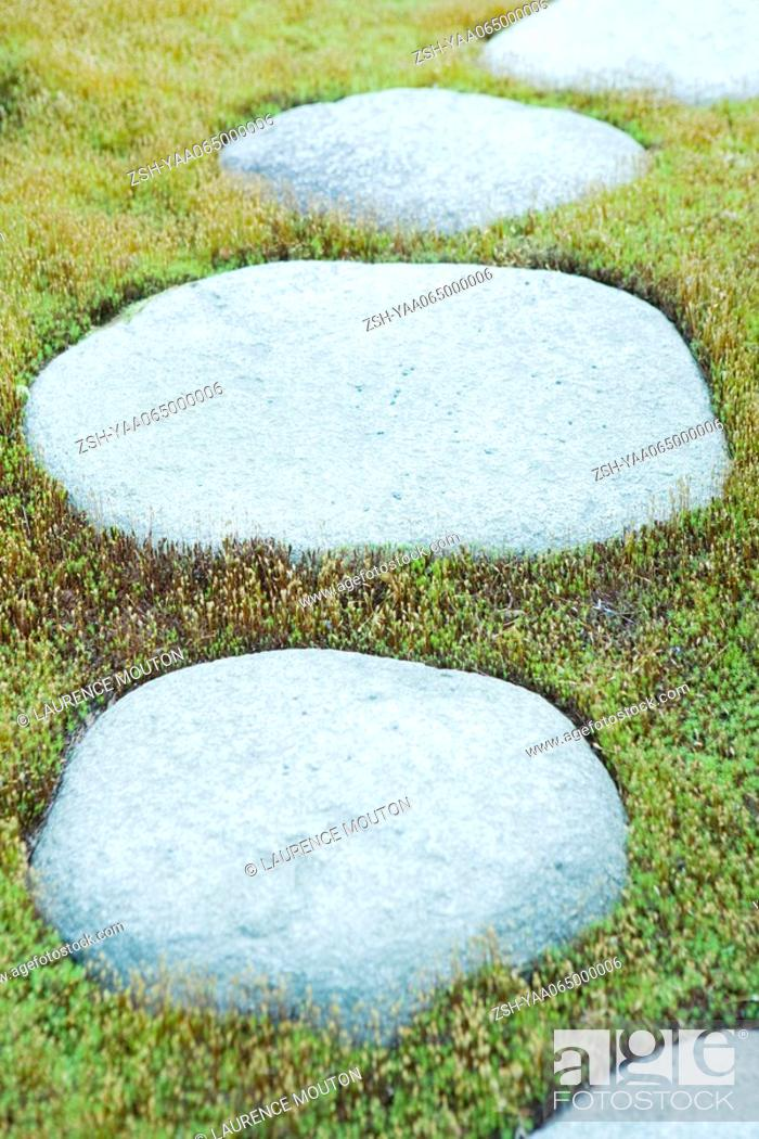 Stock Photo: Stepping stones in grass, close-up.