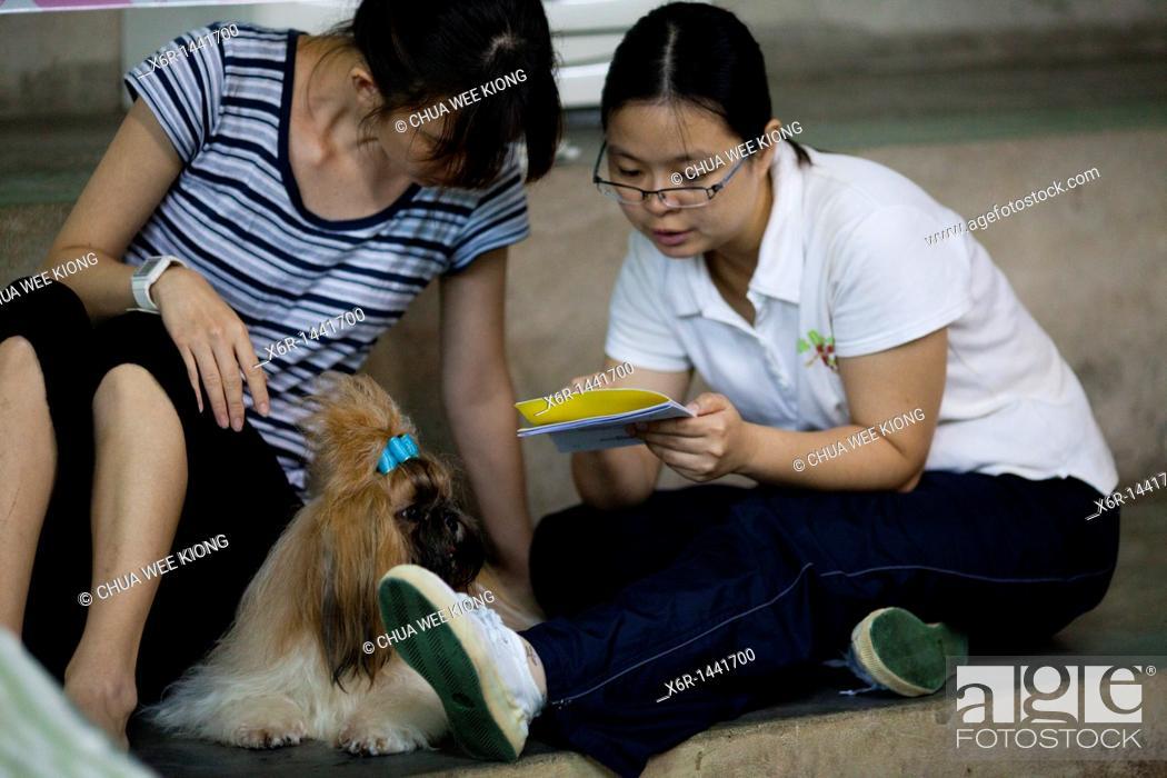 Stock Photo: Reading at dog show Kuching.