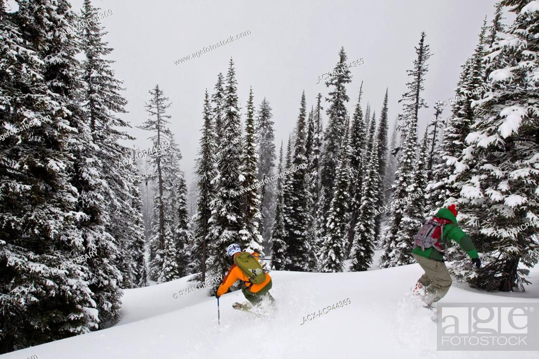 Imagen: A man skis deep powder in the monashees while cat skiing. Vernon, Britsh Columbia, Canada.