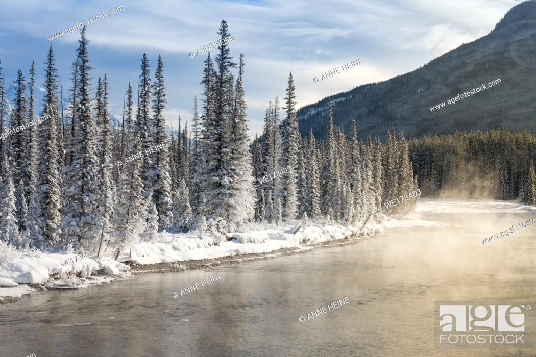 Stock Photo: Bow River at Castle Junction. Banff National Park, Alberta, Canada.